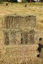 Hay stacks for front covers of magazines newspapers and billboards Stock Images