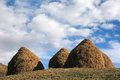 Hay stacks in the late of autumn Stock Photography