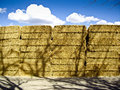 Hay on a Summers day Royalty Free Stock Photo