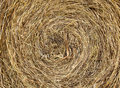 Hay texture Royalty Free Stock Photos