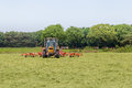 Hay truning to dry grass in the sun on the field in the Netherla Royalty Free Stock Photo