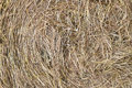 Hay twisted in a haystack as the background Royalty Free Stock Photo