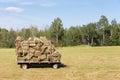 Hay Wagon in a Farm Field