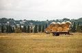 Hay wagon. Royalty Free Stock Photo