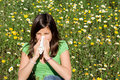 Hayfever allergy Stock Photography
