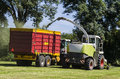 Haymaking forage harvester with a machine Stock Photography