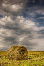 Haystack in field Royalty Free Stock Photo