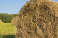 Haystack on the green field Royalty Free Stock Photography