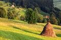 Haystack In Nature