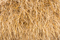 Haystack, sheaf of dry grass, hay, straw,  texture, abstract background Royalty Free Stock Photo