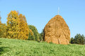 Haystack of straw on a green grass Royalty Free Stock Photo