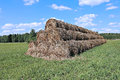 Haystacks on the farm in field a sunny day Royalty Free Stock Images