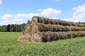 Haystacks on the farm in field a sunny day Royalty Free Stock Photo