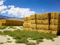 Haystacks in the high desert Royalty Free Stock Photography