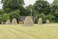 Haystacks on a meadow Royalty Free Stock Photo