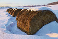 Haystacks in snowy field on  winter day Royalty Free Stock Photo