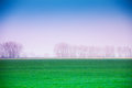 Haze winter landscape with valley in romania green front during spring time Stock Photos