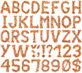 Hazelnut Alphabet Cutout Stock Images