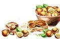 Hazelnut background. Watercolor template