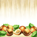 Hazelnut background. Watercolor template