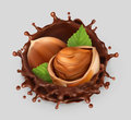 Hazelnut and chocolate splash. 3d vector icon Royalty Free Stock Photo