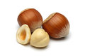 Hazelnut Group Royalty Free Stock Image