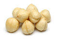 Hazelnut group Stock Photos
