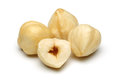 Hazelnut group Stock Images