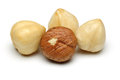 Hazelnut group Royalty Free Stock Photos