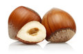 Hazelnut Royalty Free Stock Photo