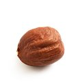 Hazelnut single on white background macro image Stock Photos