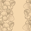 Hazelnut vector illustration and leaf Royalty Free Stock Images