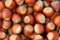 Hazelnuts background or filbert top view Royalty Free Stock Image