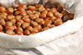 Hazelnuts in a bag Royalty Free Stock Photography