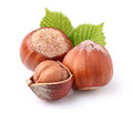 Hazelnuts in closeup with leaves Royalty Free Stock Photos