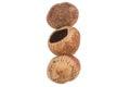 Hazelnuts eaten on a white background Royalty Free Stock Images