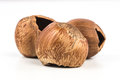 Hazelnuts eaten on a white background Royalty Free Stock Photography