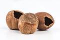 Hazelnuts eaten on a white background Stock Photos