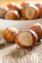 Hazelnuts (filbert) Royalty Free Stock Photos