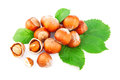 Hazelnuts filberts in shells and green leaves food ingredients Royalty Free Stock Image