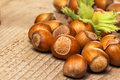 Hazelnuts group close up on the wooden table Royalty Free Stock Image