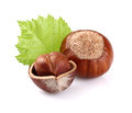 Hazelnuts with leaf on a white background Stock Photo