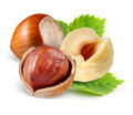 Hazelnuts with leaves isolated on white Royalty Free Stock Photo