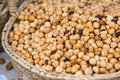Hazelnuts on the market fresh shelled spanish Stock Images