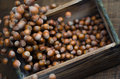 Hazelnuts in Motion Tumbling into Wooden Box Stock Images