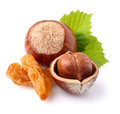 Hazelnuts with raisins and leaf Stock Image