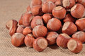 Hazelnuts in a sacking background Royalty Free Stock Photo