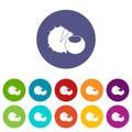 Hazelnuts set icons