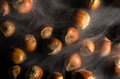 Hazelnuts in smoke Royalty Free Stock Photo