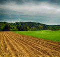 Hdr landscape with meadows trees and blue sky Royalty Free Stock Photography